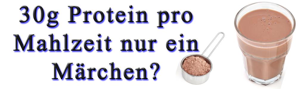 MAXIMALE PROTEIN AUFNAHME FÜR DEN MUSKELAUFBAU.